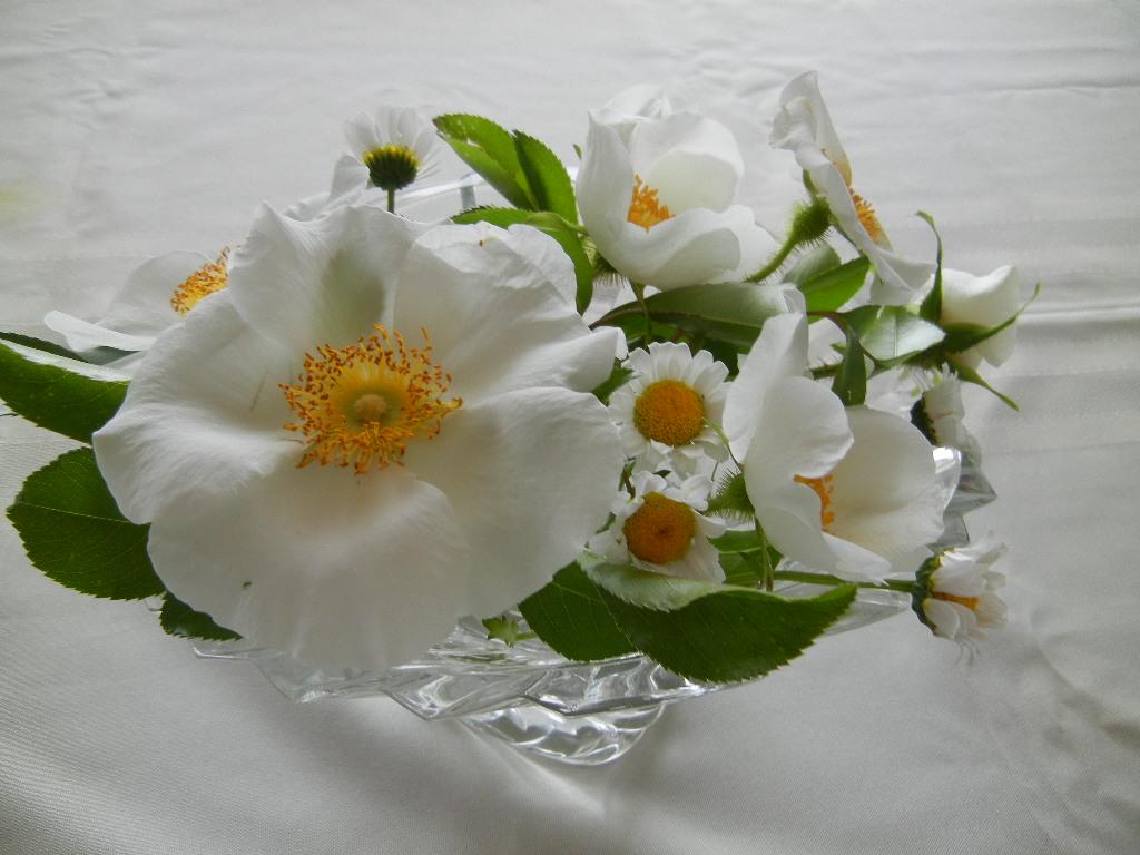 2012年5月15日(火)自主トレお絵描き!_f0060461_19493270.jpg