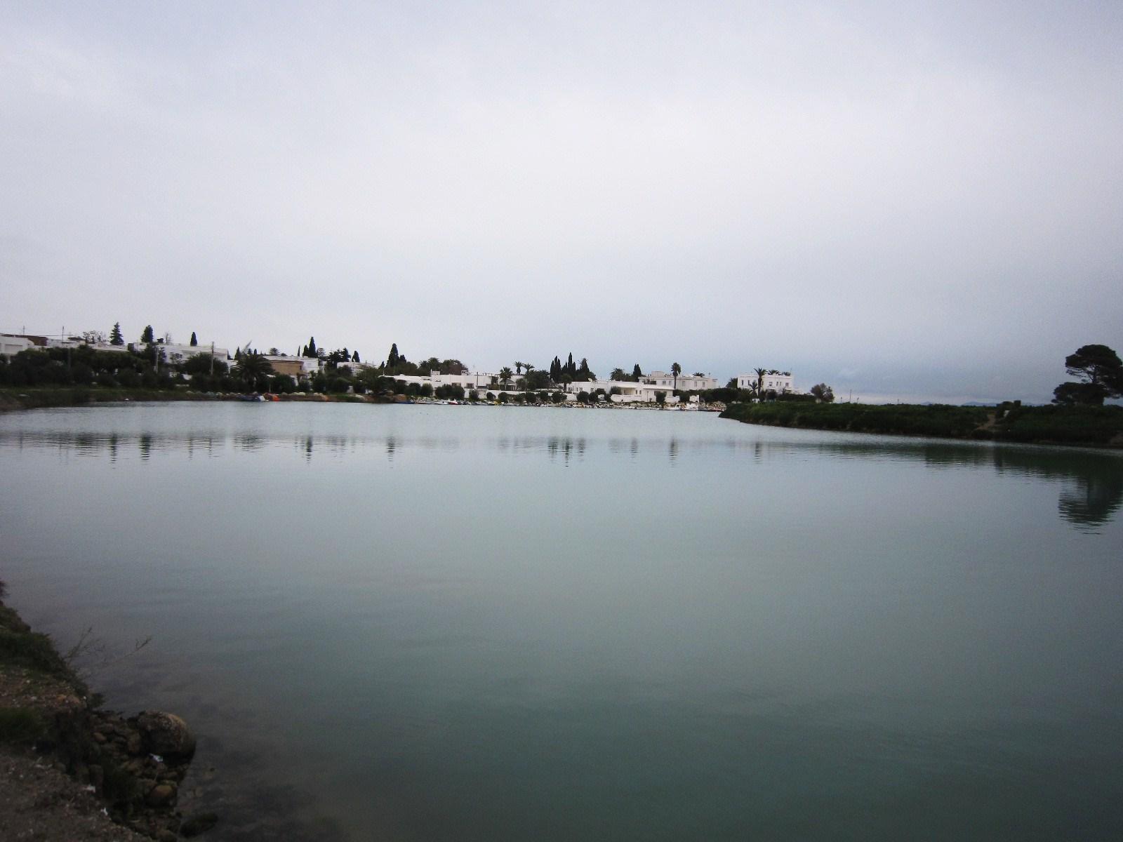 カルタゴ遺跡・トフェ(タトニ神の聖域)/古代カルタゴの港_e0233674_8501637.jpg