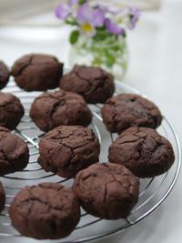チョコレートクッキー_b0142989_21201575.jpg