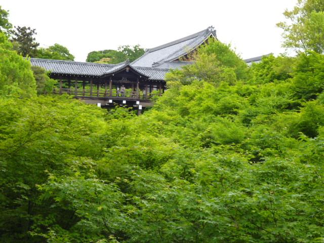 新緑の京都へ・・・・その1_b0210699_21565242.jpg