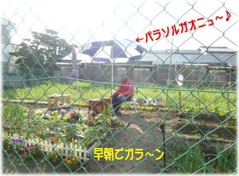 c0058727_2141257.jpg