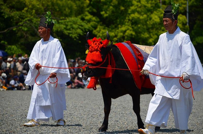 「葵祭」2012年・晴天(更新)_e0237645_15202312.jpg