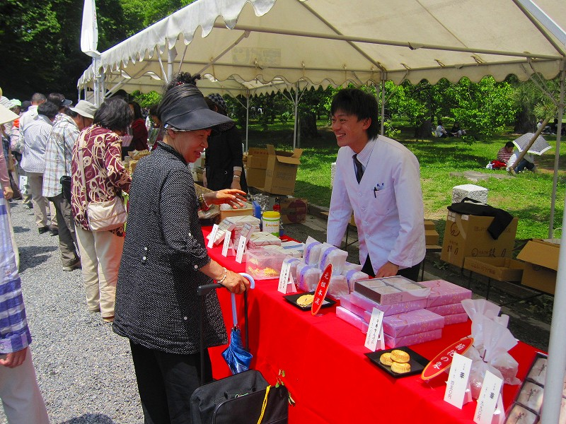 「葵祭」2012年・晴天(更新)_e0237645_1525557.jpg
