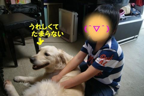 c0214455_14242336.jpg