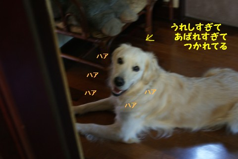 c0214455_1425597.jpg
