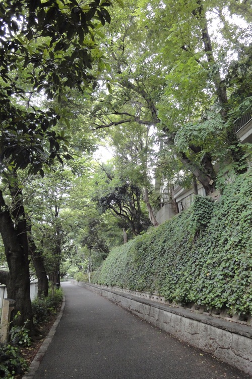 新緑のフォーシーズンズホテル 椿山荘_f0054859_19213365.jpg