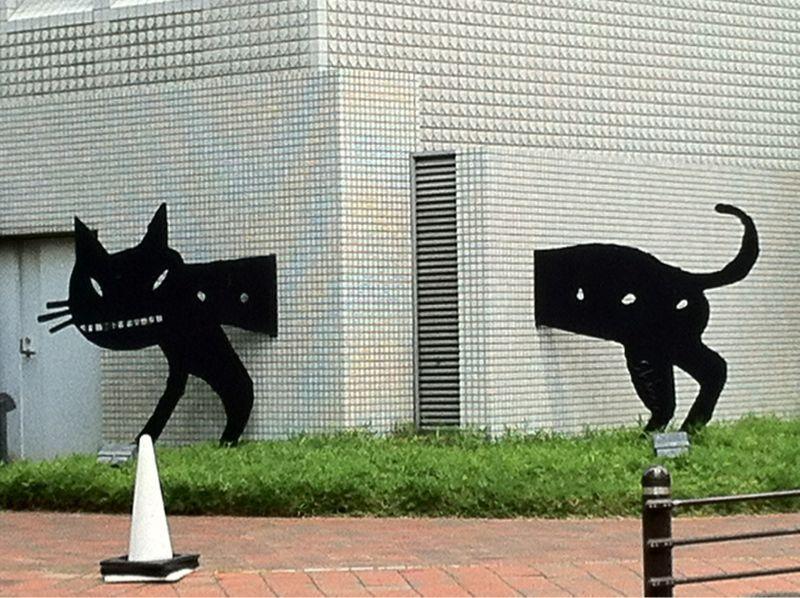 黒猫_c0180971_22452077.jpg