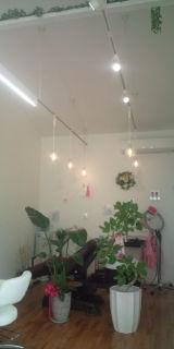 新しい美容室_f0172281_1739112.jpg