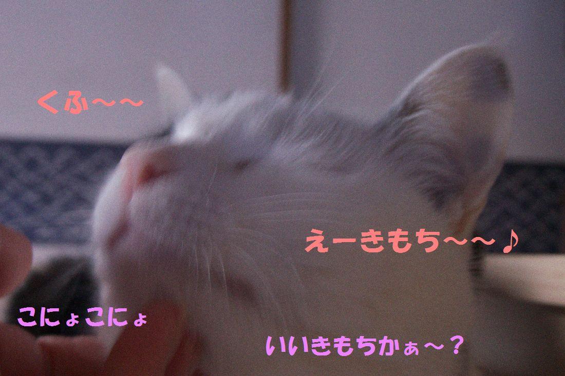 f0197682_14183638.jpg