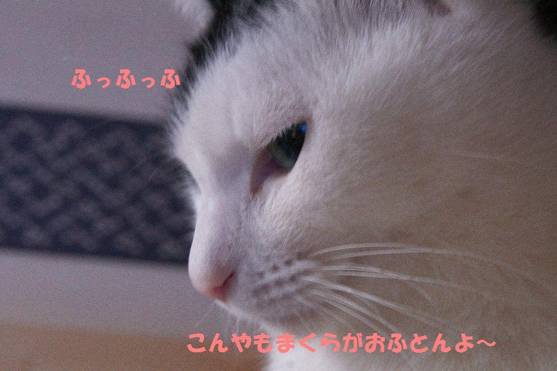 f0197682_2273533.jpg