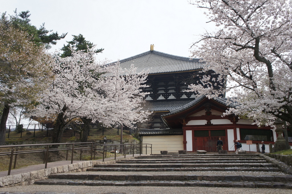 JapanDiary@BerlinVol.3 奈良最終日_c0180686_1811172.jpg