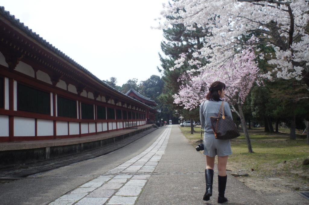 JapanDiary@BerlinVol.3 奈良最終日_c0180686_18141917.jpg