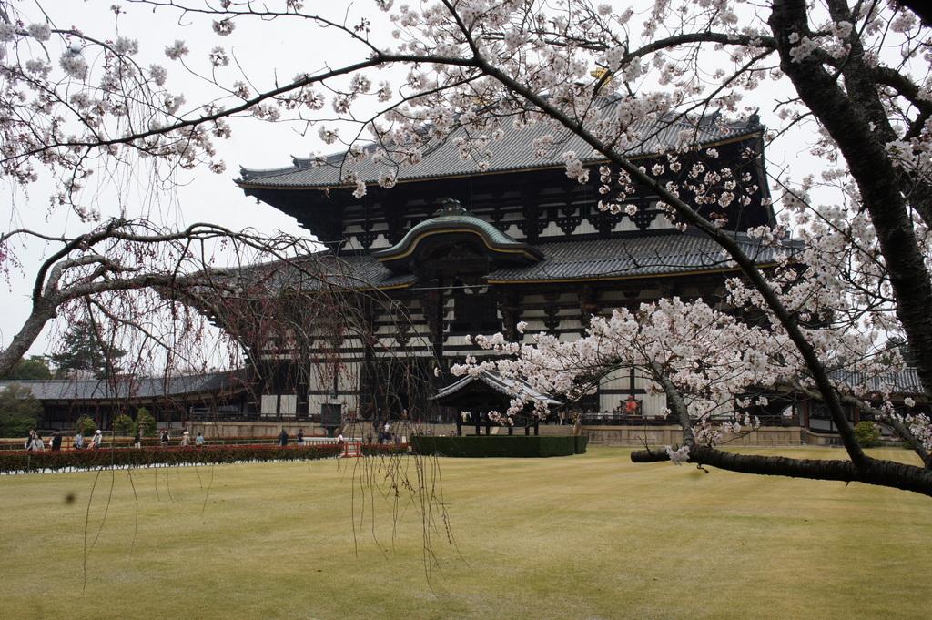 JapanDiary@BerlinVol.3 奈良最終日_c0180686_18224493.jpg