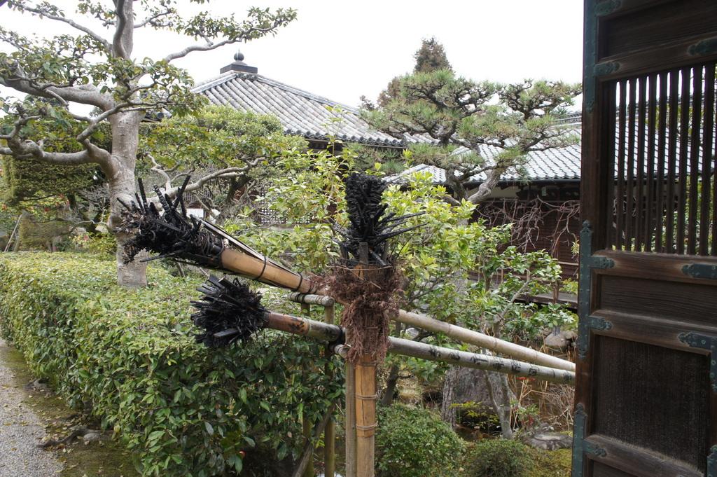 JapanDiary@BerlinVol.3 奈良最終日_c0180686_1834434.jpg