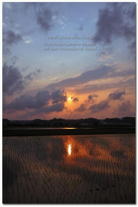 夕雲たなびく・・・。_f0235723_19541262.jpg