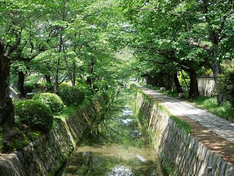 哲学の道    ~京都~_c0235725_0201531.jpg