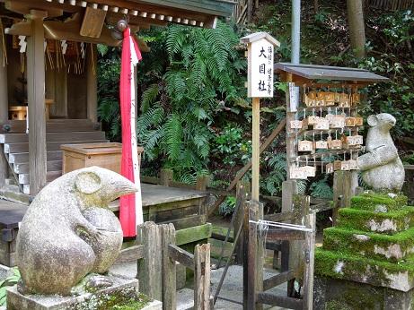 哲学の道    ~京都~_c0235725_0314036.jpg