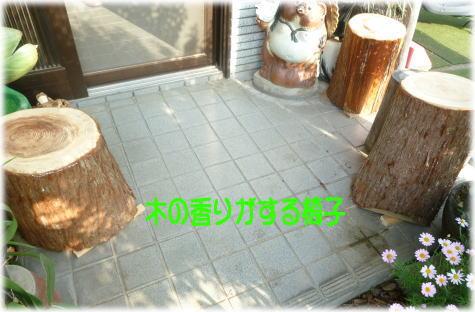 c0058727_6504593.jpg
