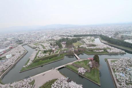 桜景 2012_d0179447_2353513.jpg