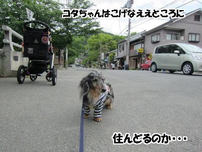 d0020869_1546486.jpg