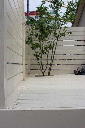 ガーデン工事途中経過_b0239082_22162715.jpg