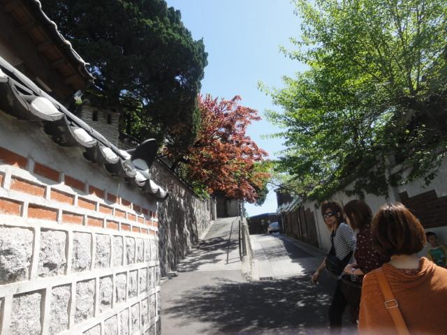 韓国ツアー終了です_e0201009_22121385.jpg