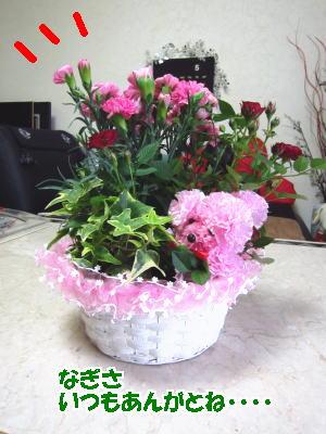 d0020869_13141751.jpg