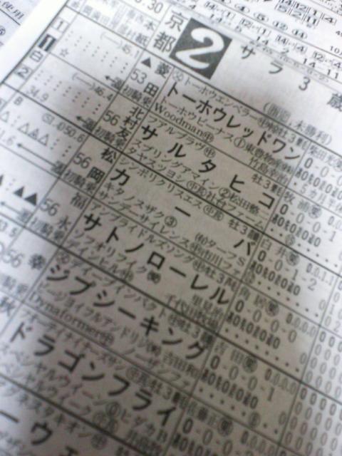明日の京都2レース_c0001670_2058597.jpg