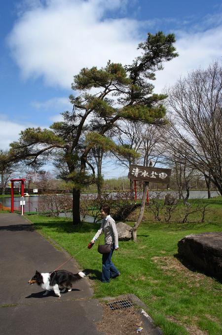 清水公園_d0233474_1462658.jpg