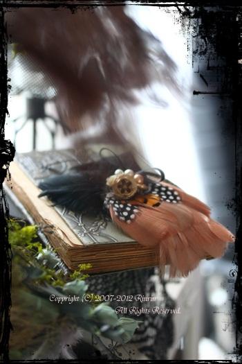 オトメイロの世界・・・フェザーに心、魅かれる_e0237680_12293483.jpg