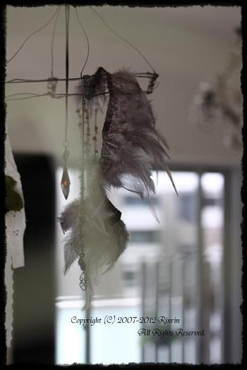 オトメイロの世界・・・フェザーに心、魅かれる_e0237680_1246234.jpg