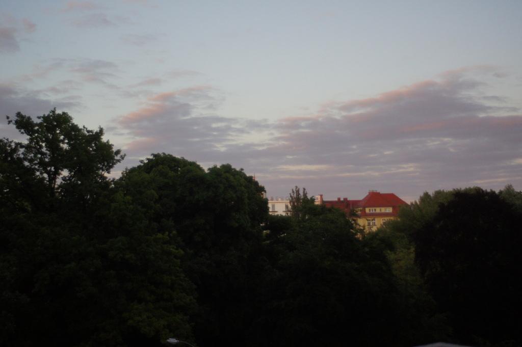 金曜日、朝。11℃。_c0180686_16291125.jpg