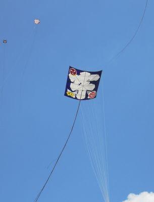 浜松祭り2日目「大凧、いよいよ空へ・・」_e0030586_12281910.jpg