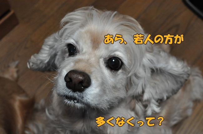b0067012_14365079.jpg