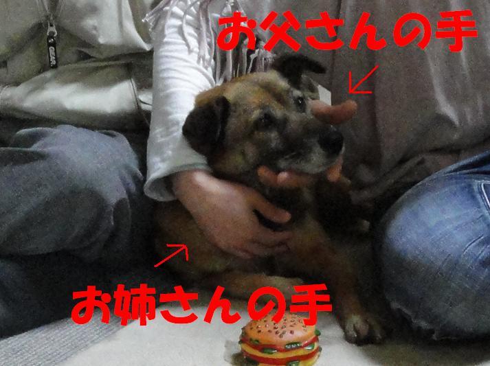 b0207320_4501552.jpg