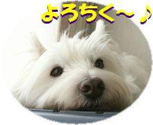 f0084422_19135066.jpg
