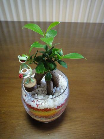 母の日のプレゼント_d0041427_2262610.jpg