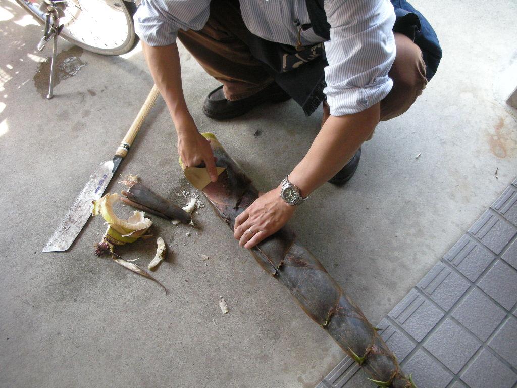 好奇心!_a0156636_20122042.jpg