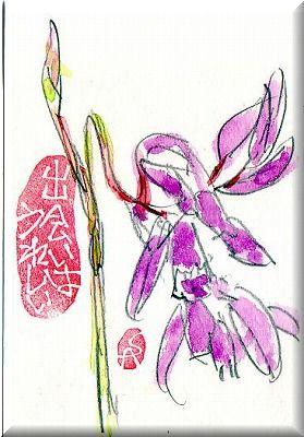 シランが 咲いてます。_e0054438_1344940.jpg