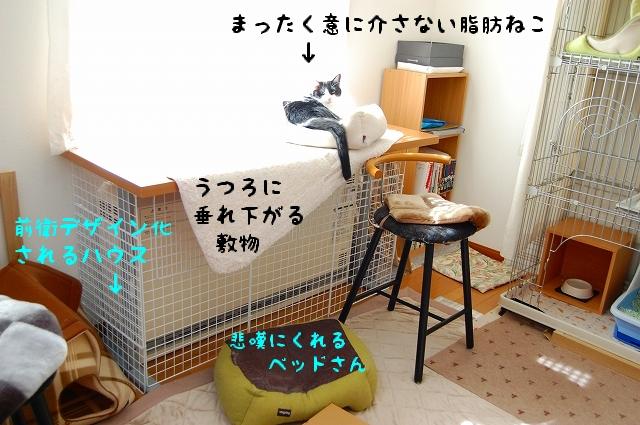 c0181639_19305394.jpg