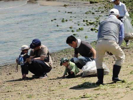 「箱作自然海岸清掃」・・・主催「自然と本の会」_c0108460_220125.jpg