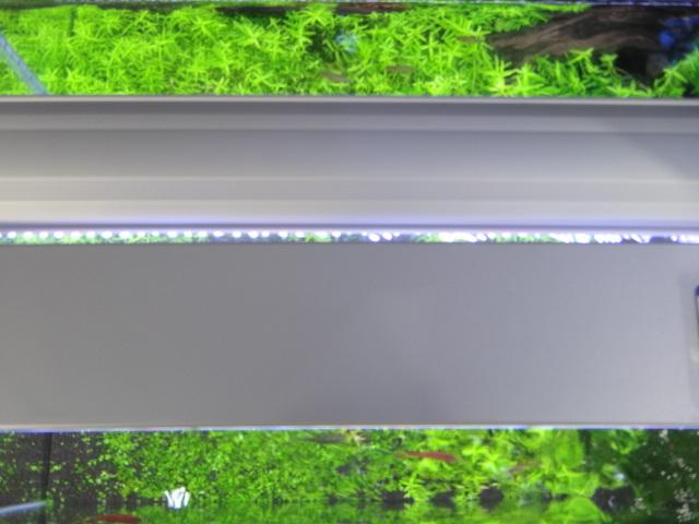 c0225669_13125357.jpg