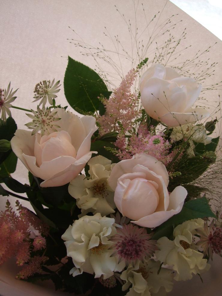 オークリーフ(風情のあるバラ)_f0049672_13552863.jpg