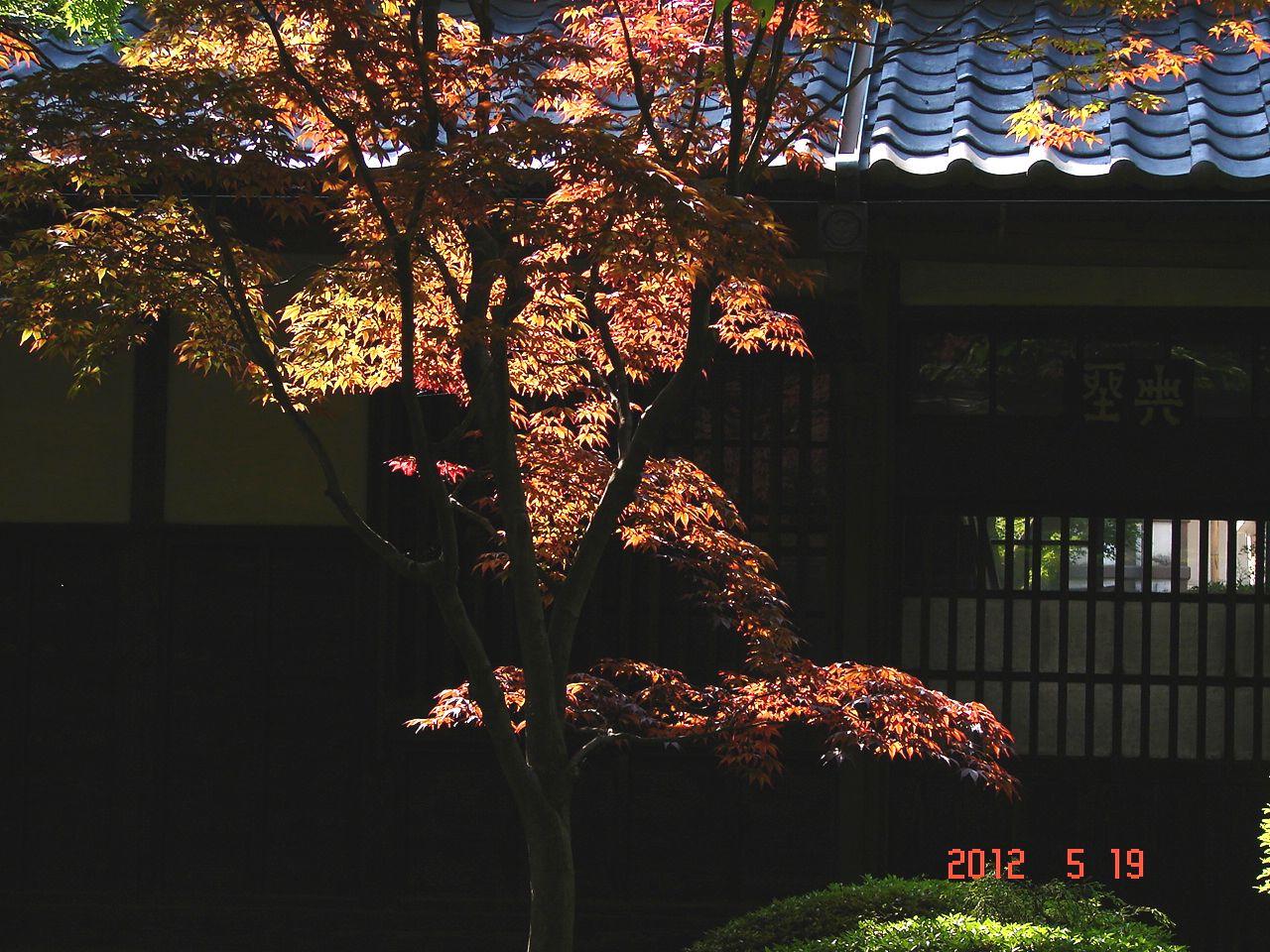 f0104277_2012496.jpg