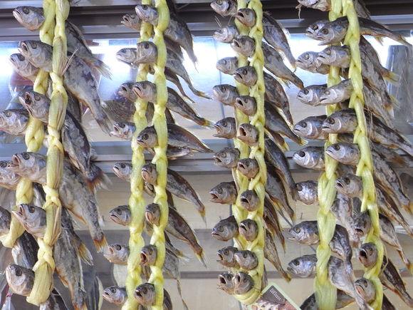 ソウルの魚市場  ~ノリャンジン水産市場再訪~  120506_c0237483_1123955.jpg