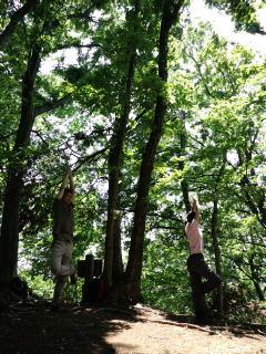 森林セラピー 新緑の白山順礼コース_e0231387_150377.jpg