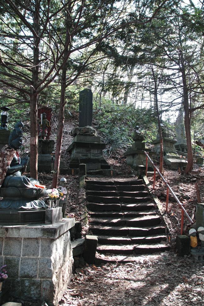 円山原始林 ~私の散歩コース~ 本日2本目の記事_c0223825_5375695.jpg