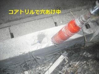 フエンス設置・他シュロの木伐採_f0031037_16445128.jpg