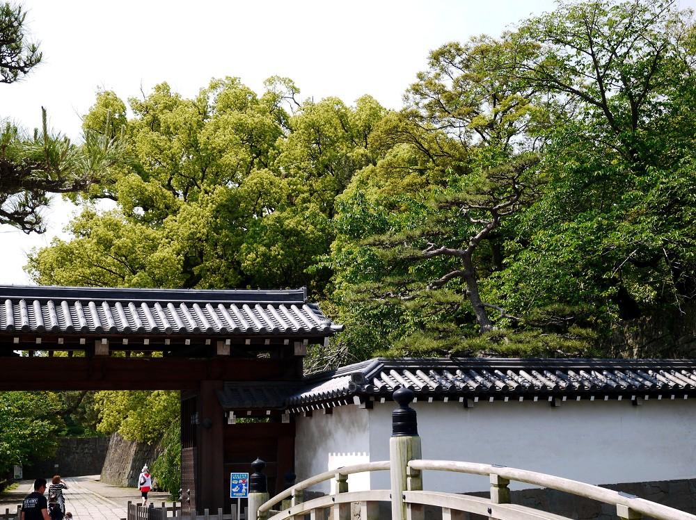 和歌山城公園にて_b0093754_22392813.jpg