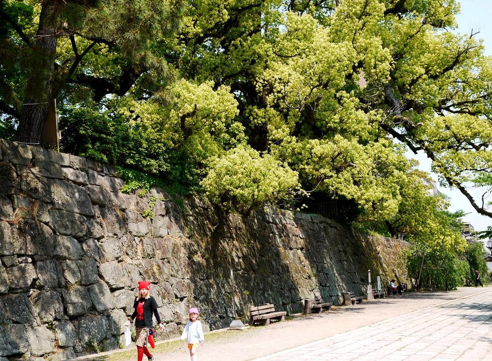和歌山城公園にて_b0093754_22394344.jpg